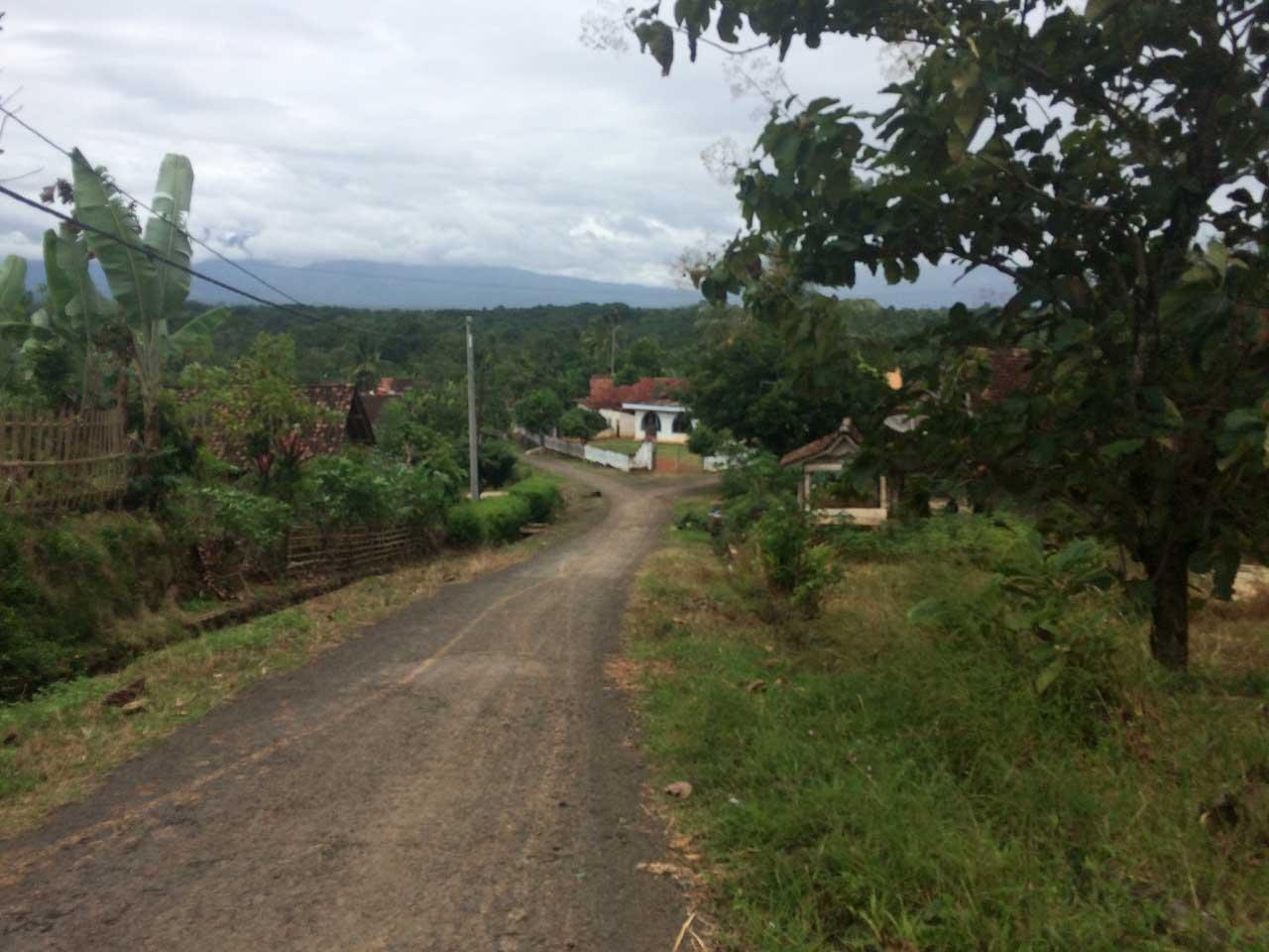 Jalan menuju curup Anggal - wisata Way Kanan - kamera iphone 5s