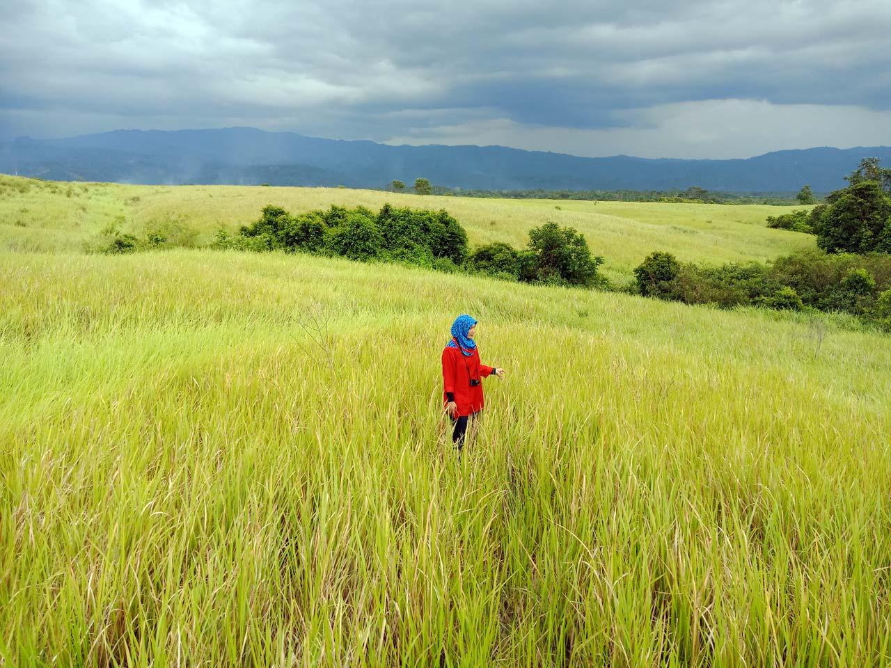 Padang Rumput - Suoh Lampung Barat - Yopie Pangkey - 1