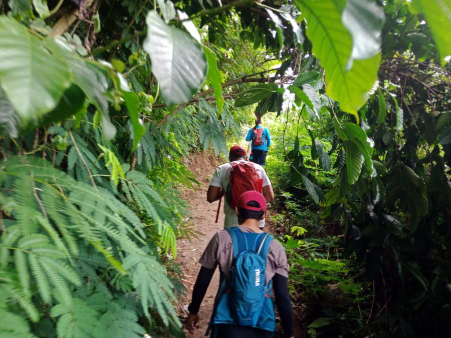 Trekking di Talang Mulya Lampung- cara menghitung kalori yang dibutuhkan tubuh - rumus kebutuhan kalori - yopiefranz.id - Yopie Pangkey