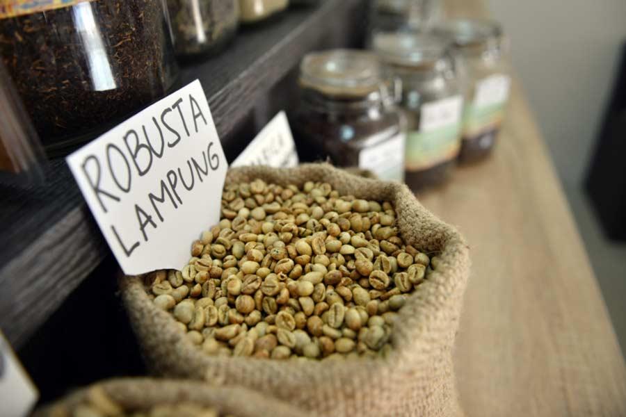 1 pohon kopi menghasilkan berapa kg - Kopi Robusta Lampung - yopiefranz.id - yopie pangkey