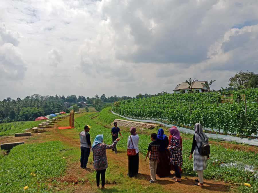 tanah 1 kavling berapa meter - 1 hektar berapa kavling - yopiefranz.id - yopie pangkey - 1